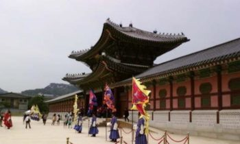 OMD Travel:  South Korea
